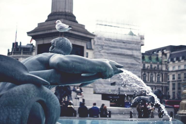 Trafalgar Square_Chloe Keogan (1)